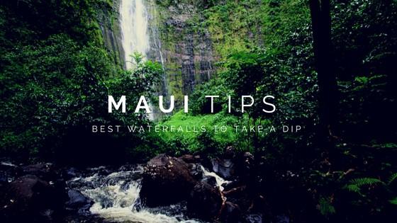 Maui Travel Guide Blog - Page 7 of 11 - Kahana Village